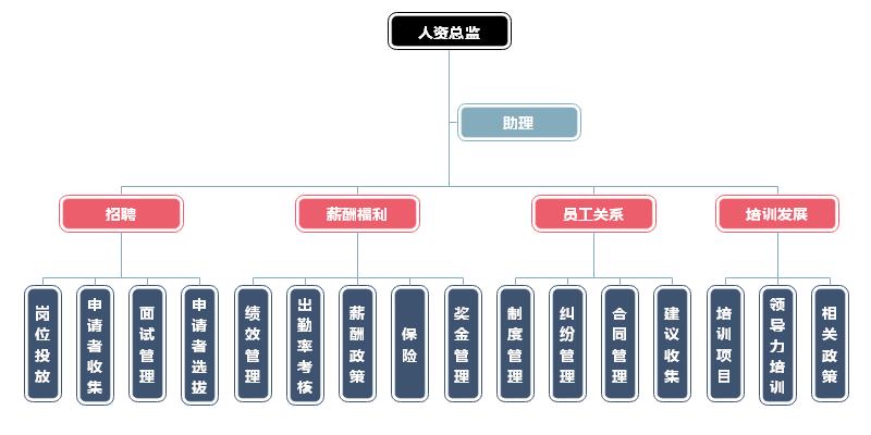 人力资源组织结构图