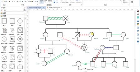 绘制家系图的方法