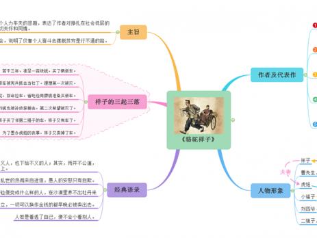 骆驼的样子这本书的思维导图_中考复习 相关文章 - 亿图官方网站