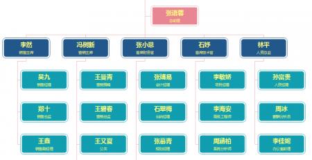 销售公司组织架构图